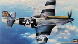 Hasegawa 1:48 P-51 D Mustang USAAF Fighter Plastic Model Kit
