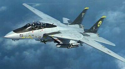 f 14d tomcat fighter plastic model airplane